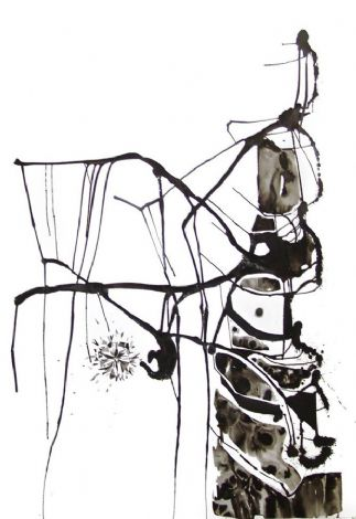 'The Diamonds drawer', 2010,ink on paper, 225x150 cm